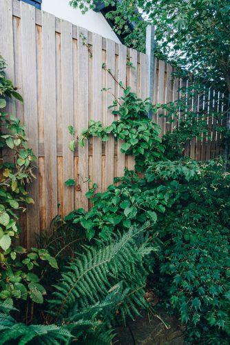 Holz-Sichtschutz | Zäune & Tore